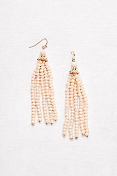 Stone Drop Tassel Earrings 74671G