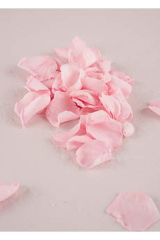 Preserved Natural Rose Petals