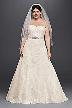 Allover Lace Plus Size A-Line Wedding Dress 9WG3805