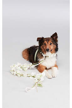 Floral Ribbon Dog Leash