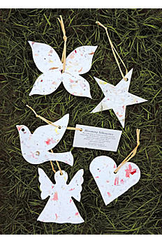 Eco2 Blooming Favors ECO2-FVR