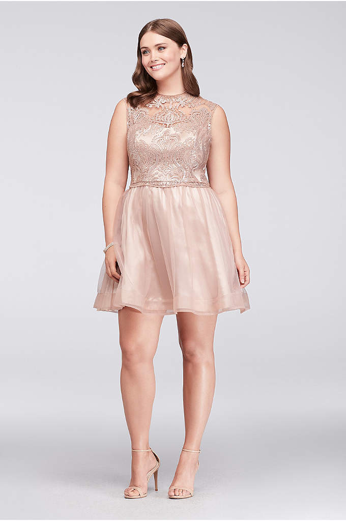 Embroidered Scroll Lace and Mesh Plus Size Dress - Delicately detailed with soft, scrolling embroidery and glimmering