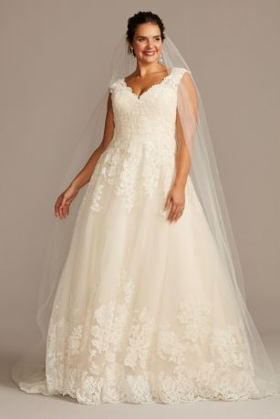 V-Neck Plus Size Wedding Dresses