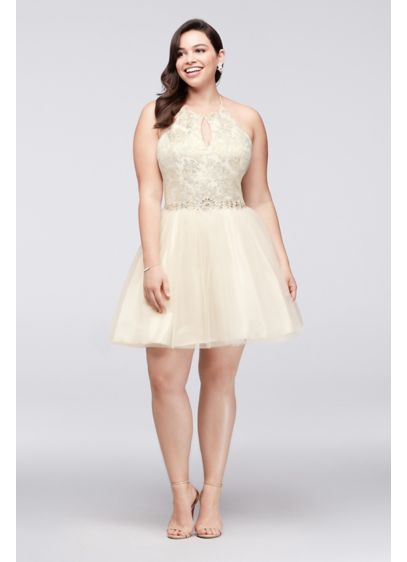 Beaded Brocade and Tulle Flare Plus Size Dress | David\'s Bridal
