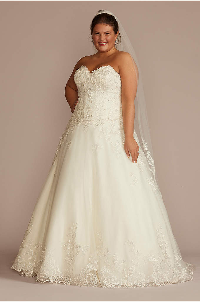 Beaded Lace and Tulle Plus Size Wedding Dress
