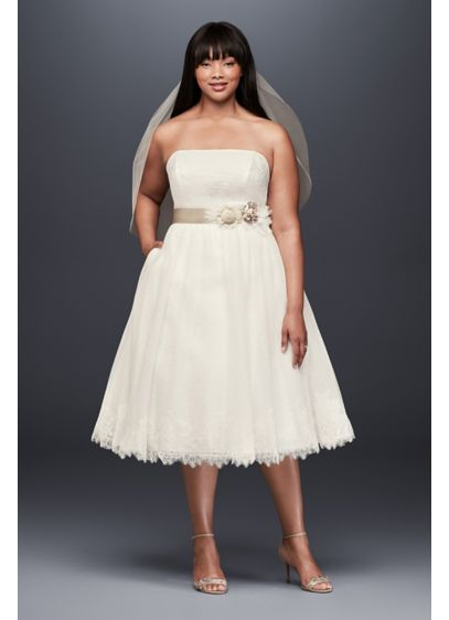 Dotted Tulle Plus Size Tea-Length Wedding Dress | David's ...