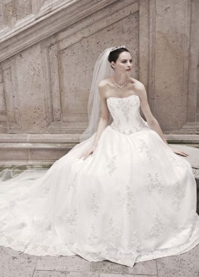 Strapless Organza Ball Gown with Lace Appliques CWG406