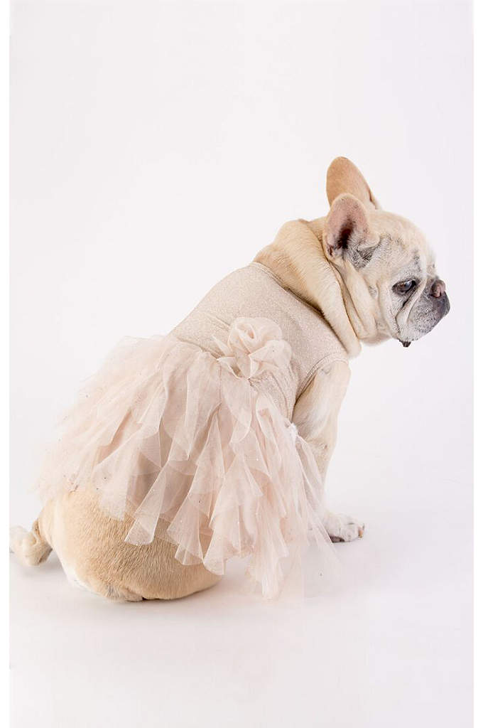 Gold Glitter Ruffled Tulle Skirt Dog Dress - Your furry friend will be dressed to impress