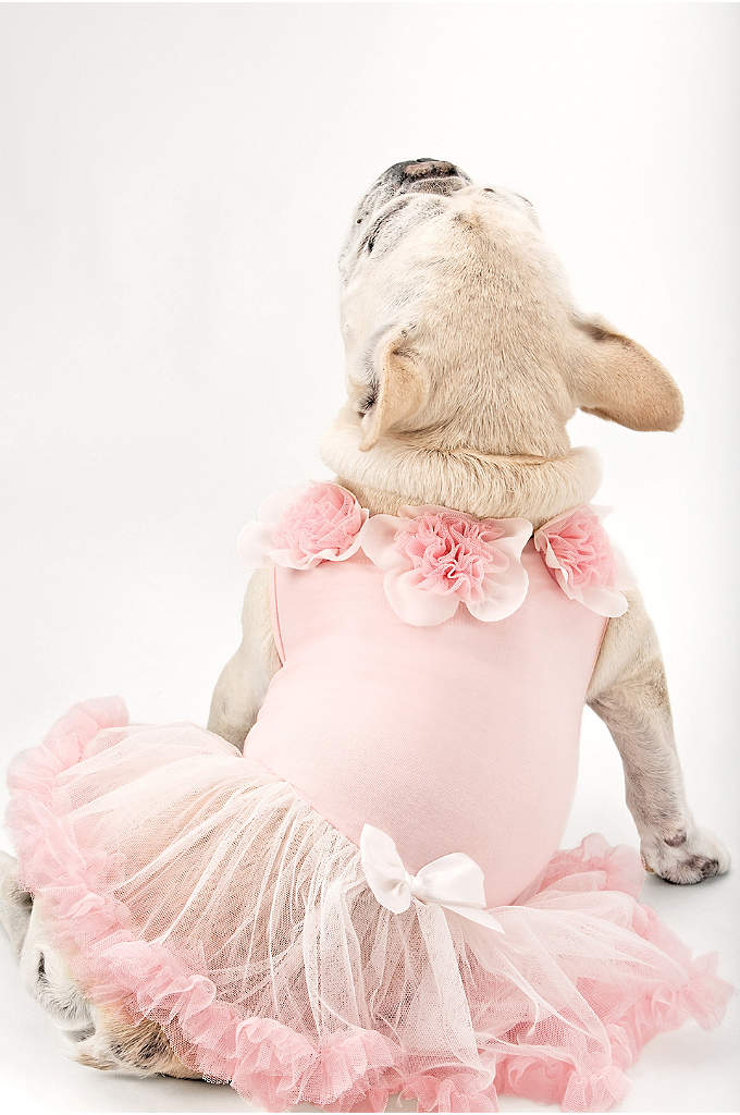 Sweet Floral Trimmed Pink Dog Dress - Dress your furry companion in this adorable Sweet