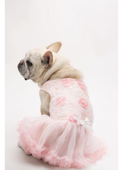 Pink (Pink and White Floral Embellished Dog Dress)