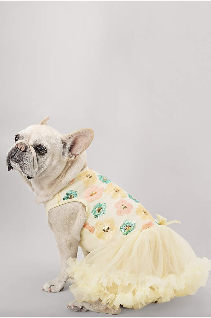 Pastel Sequin Floral Embellished Dog Dress - Something old, something new, something borrowed, and something