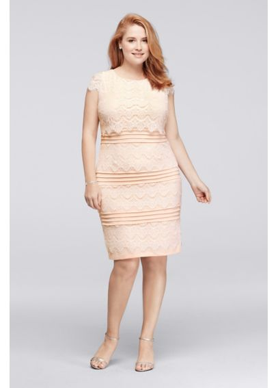 Knee Length Plus Size Lace Dress with Cap Sleeves JSWIF1ASU