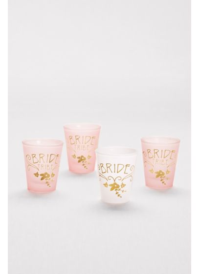 Bride and Bride Tribe Shot Glass Set - Wedding Gifts & Decorations
