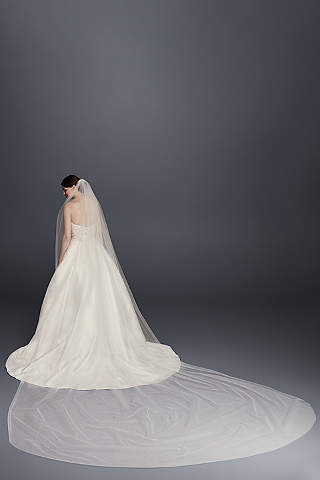 Single Tier Raw Edge 165 Inch Cathedral Veil