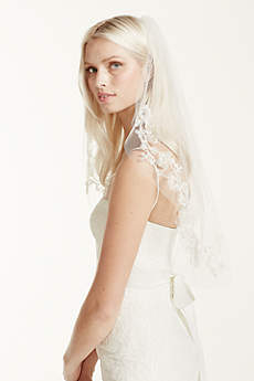 Single-Tier Lace Embellished Cage Veil