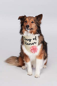Dog of Honor Flower Bandana