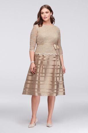 Lace and Striped Organza Plus Size Midi Dress