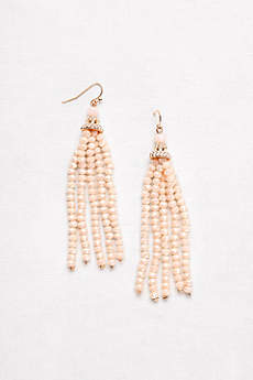 Stone Drop Tassel Earrings