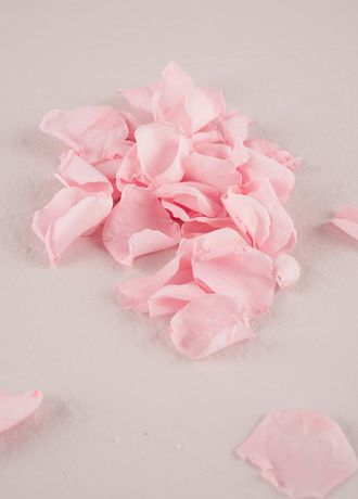 Preserved Natural Rose Petals