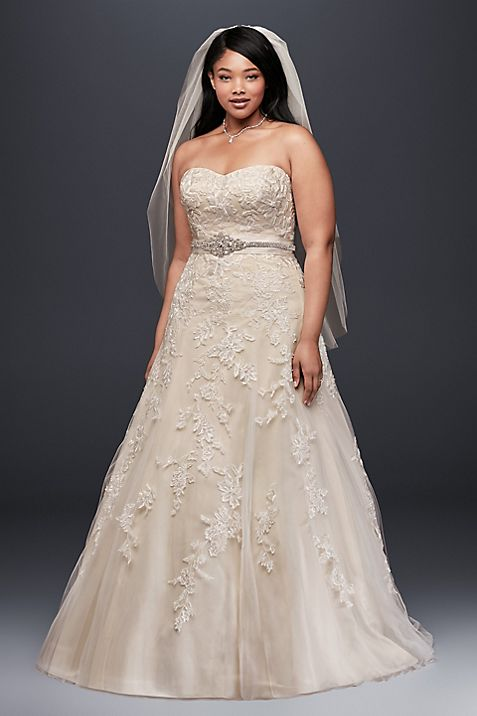 Tulle A-Line Plus Size Wedding Dress with Lace | David\'s Bridal