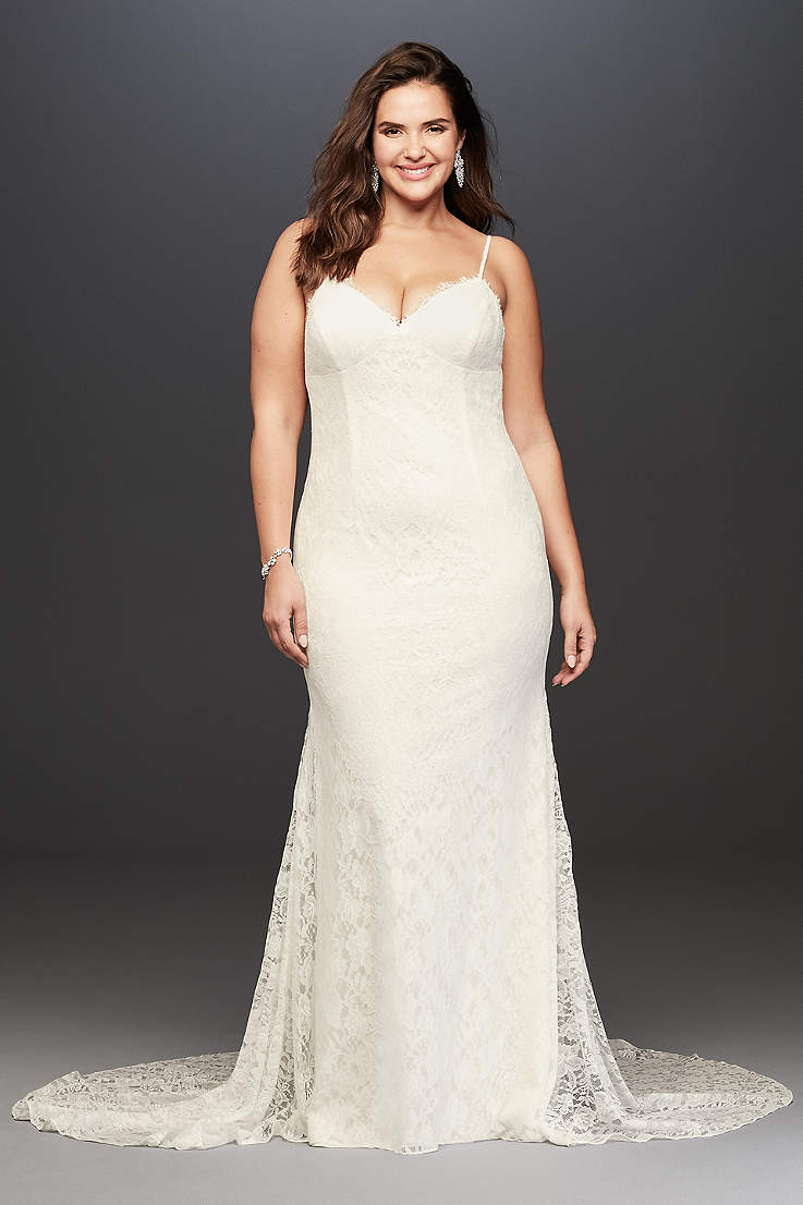 7dfb4100be Plus Size Wedding Dresses & Bridal Gowns | David's Bridal