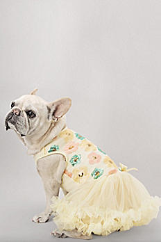 Pastel Sequin Floral Embellished Dog Dress DP-143