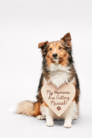 My Humans Are Getting Married Sign