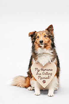My Humans Are Getting Married Sign SAR1704021