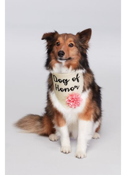 Dog of Honor Flower Bandana - Wedding Gifts & Decorations