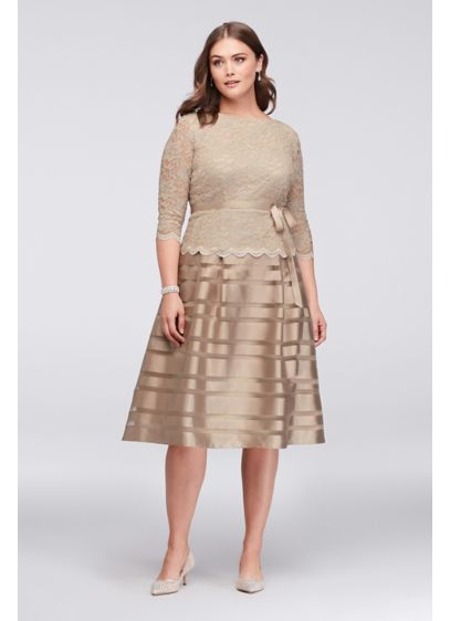 Lace and Striped Organza Plus Size Midi Dress