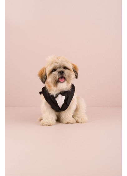 Pet Tux - Wedding Gifts & Decorations