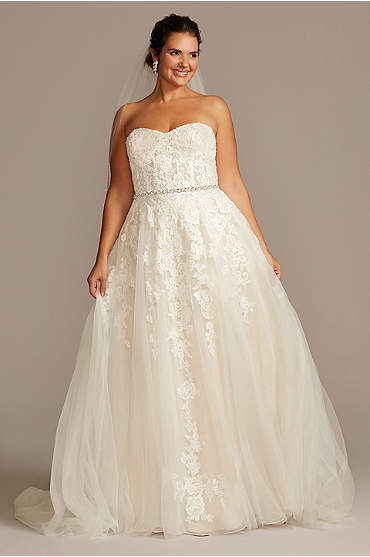 Sheer Lace and Tulle Plus Size Wedding Dress