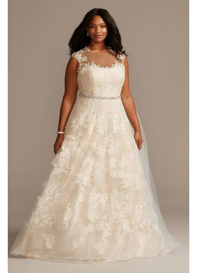 Applique Point D'Esprit Plus Size Wedding Dress - Embroidered floral applique frames the illusion neckline and