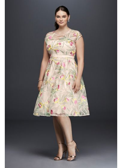 Embroidered Organza Fit-and-Flare Plus Size Dress