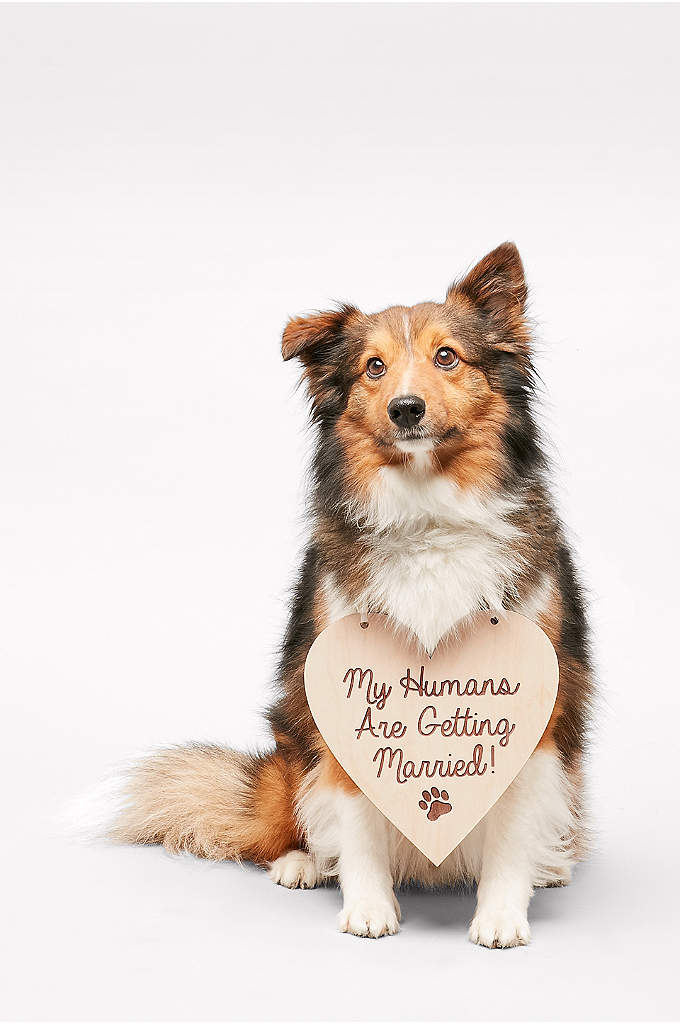 My Humans Are Getting Married Sign - Does your four-legged friend have an important role