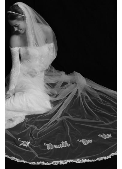 David's Bridal Ivory (Til Death Do Us Part Applique Cathedral Veil)
