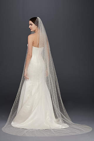 Cathedral Veils: Lace, Blushers & More | David\'s Bridal
