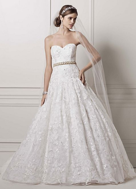 Strapless Ball Gown with All Over Lace Appliques | David\'s Bridal